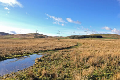EPG co-authors White Paper Guidelines for Onshore Wind Development on Scotland's Peatland Habitats